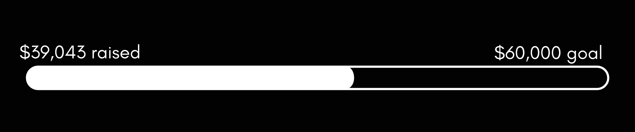 PAIR 2020 Gala webpage – header 39,000